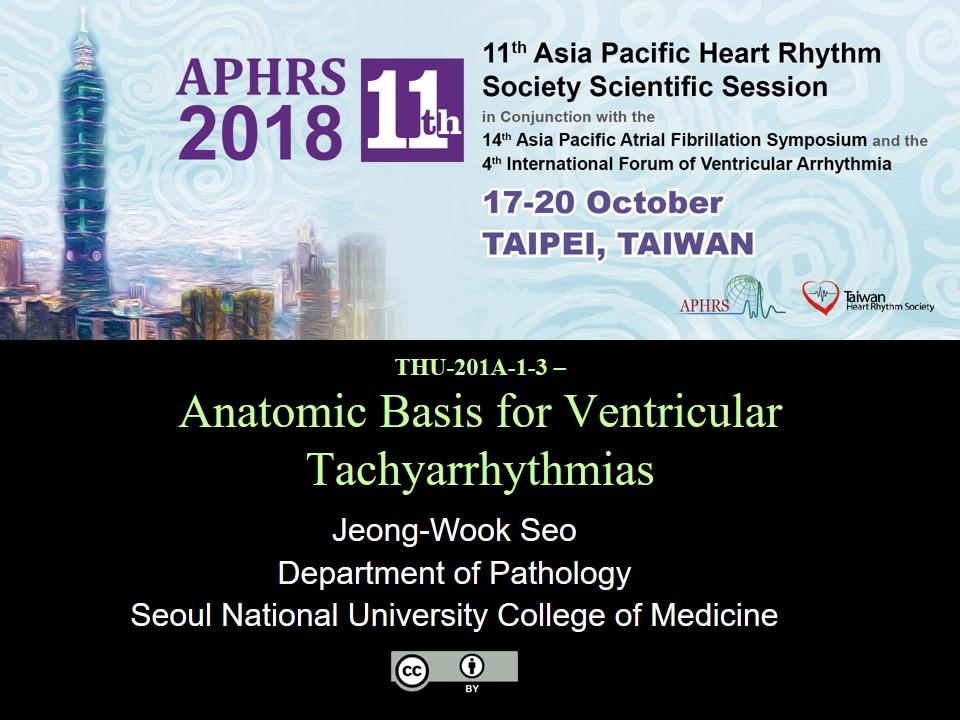 THU-201A-1-3-Anatomic Basis for Ventricular Tachyarrhythmia - Jeong-Wook Seo.jpg