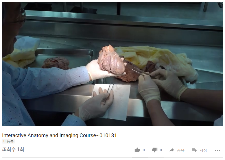Interactive Anatomy and Imaging Course 010131.PNG