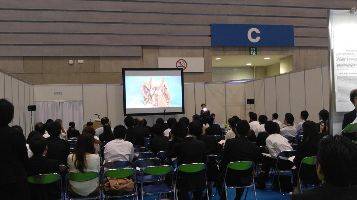 Anatomy Igawa O-7.jpg